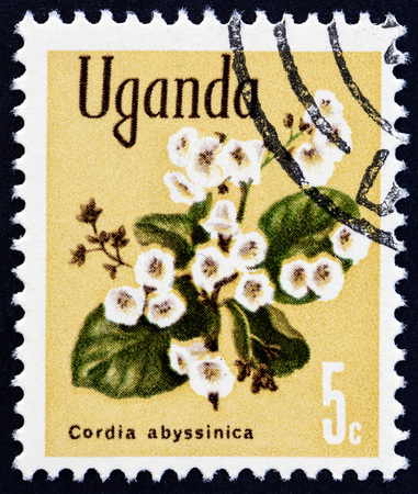 sello: UGANDA - CIRCA 1969: A stamp printed in Uganda from the Flowers  issue shows Cordia abyssinica, circa 1969.