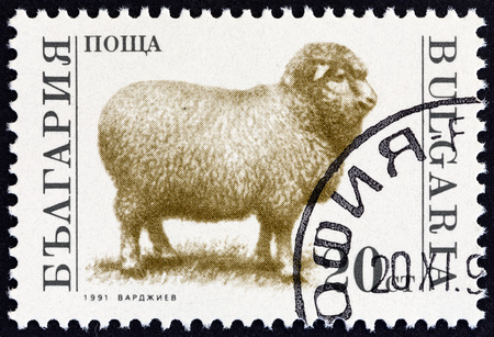 ovis: BULGARIA - CIRCA 1991: A stamp printed in Bulgaria from the Farm Animals  issue shows Sheep (Ovis aries), circa 1991.