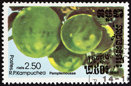 kampuchea: KAMPUCHEA - CIRCA 1986: A stamp printed in Kampuchea from the Fruits  issue shows Pomelo (Citrus maxima), circa 1986. Editorial