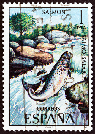 estampilla: SPAIN - CIRCA 1977: A stamp printed in Spain from the Freshwater Fish issue shows Atlantic salmon (Salmo salar), circa 1977.