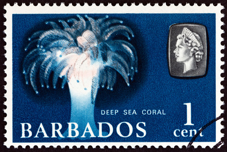 BARBADOS - CIRCA 1965: A stamp printed in Barbados from the Marine Life issue shows Deep Sea Coral, circa 1965. Editorial