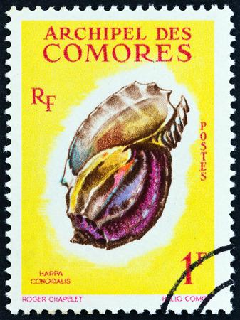 comores: COMOROS - CIRCA 1962: A stamp printed in Comoros from the Sea Shells issue shows Harpa major (Harpa conoidalis), circa 1962.