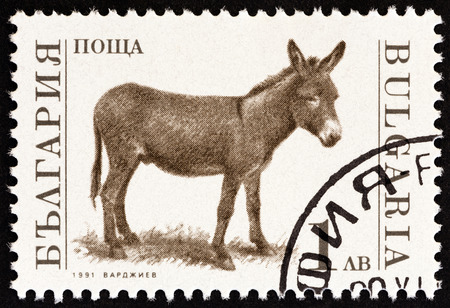 BULGARIA - CIRCA 1991: A stamp printed in Bulgaria from the Farm Animals  issue shows Donkey (Equus asinus), circa 1991.