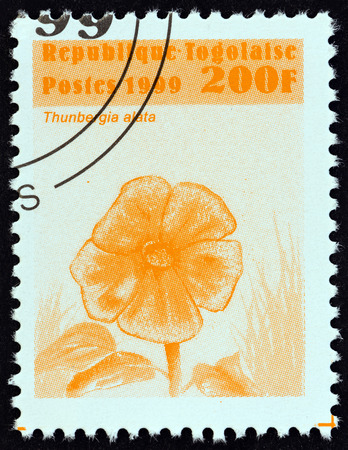 lamiales: TOGO - CIRCA 1999: A stamp printed in Togo from the Flowers  issue shows Thunbergia alata, circa 1999.