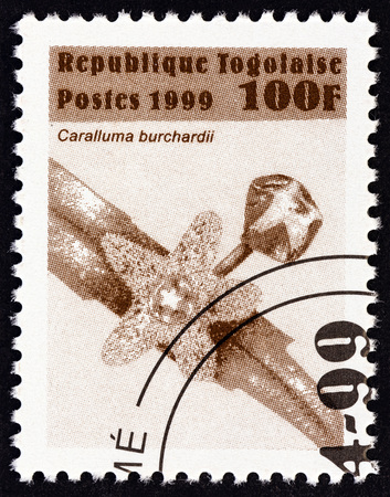sello: TOGO - CIRCA 1999: A stamp printed in Togo from the Flowers  issue shows Caralluma burchardii, circa 1999. Editorial