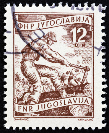 lumbering: YUGOSLAVIA - CIRCA 1951: A stamp printed in Yugoslavia from the Local Economy issue shows lumbering, circa 1951.