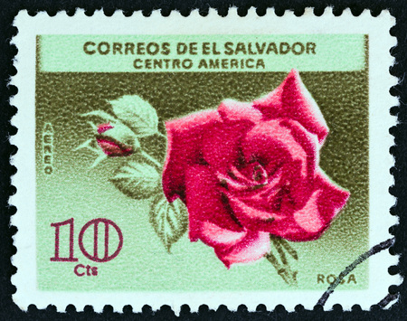 EL SALVADOR - CIRCA 1965: A stamp printed in El Salvador from the Flowers issue shows Rose, circa 1965.