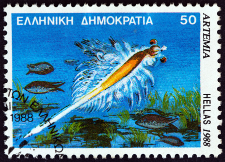 estampilla: GREECE - CIRCA 1988: A stamp printed in Greece from the Marine Life issue shows Artemia salina shrimp, circa 1988. Editorial