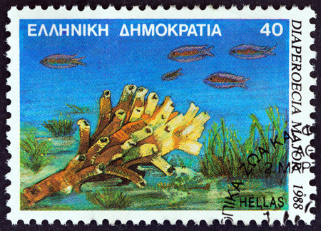GREECE - CIRCA 1988: A stamp printed in Greece from the Marine Life issue shows Diaperoecia major polyzoan clump-forming animals, circa 1988.