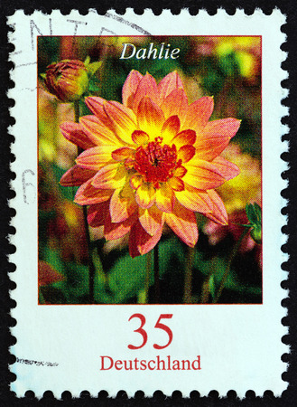 bundespost: GERMANY - CIRCA 2006: A stamp printed in Germany from the Flowers issue shows Dahlia variabilis, circa 2006.