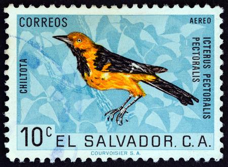 estampilla: EL SALVADOR - CIRCA 1963: A stamp printed in El Salvador from the Fauna issue shows Spotted-breasted oriole (Icterus pectoralis), circa 1963.