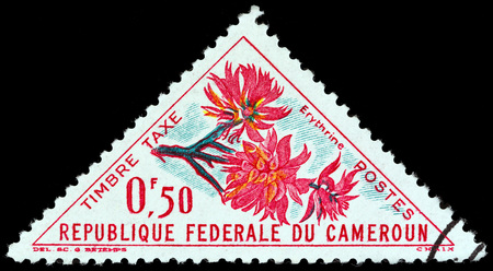 cameroonian: CAMEROON - CIRCA 1963: A stamp printed in Cameroon from the Flowers issue shows Erythrine, circa 1963. Editorial