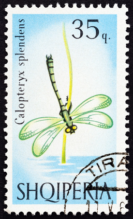 ALBANIA - CIRCA 1966: A stamp printed in Albania from the Butterflies and Dragonflies issue shows Banded demoiselle (Calopteryx splendens) damselfly, circa 1966. Editorial