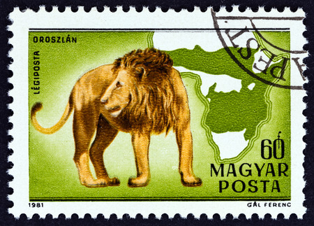 HUNGARY - CIRCA 1981: A stamp printed in Hungary from the Birth centenary of Kalman Kittenberger, explorer and zoologist issue shows Lion, circa 1981.