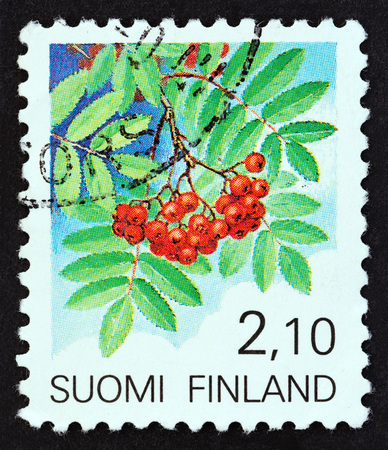 FINLAND - CIRCA 1990: A stamp printed in Finland from the Provincial Plants issue shows Rowan (Sorbus aucuparia), circa 1990.