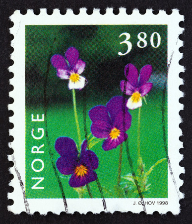 NORWAY - CIRCA 1998: A stamp printed in Norway from the Norwegian Flora issue shows Viola tricolor, circa 1998.