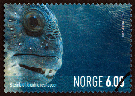 NORWAY - CIRCA 2004: A stamp printed in Norway from the Marine Life in Norway issue shows Catfish (Anarhichas lupus), circa 2004.