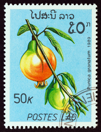 LAOS - CIRCA 1989: A stamp printed in Laos from the Fruits issue shows Pomegranates (Punica granatum), circa 1989. Editorial