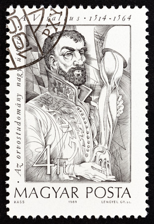 HUNGARY - CIRCA 1989: A stamp printed in Hungary from the Pioneers of Medicine (2nd series) issue shows Andreas Vesalius (dissection), circa 1989.