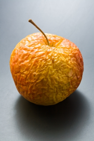 Old apple. Whole, overripe, wrinkled old apple on neutral gray background.
