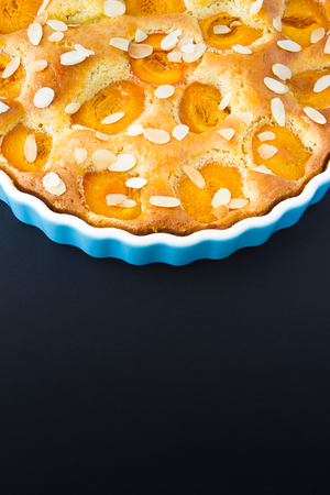 Apricot tart with black copy space, cropped