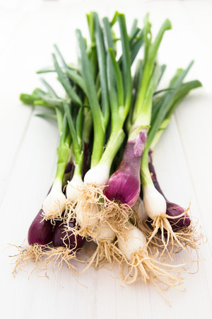 A bunch of red and green spring onions, scallions on white wooden background