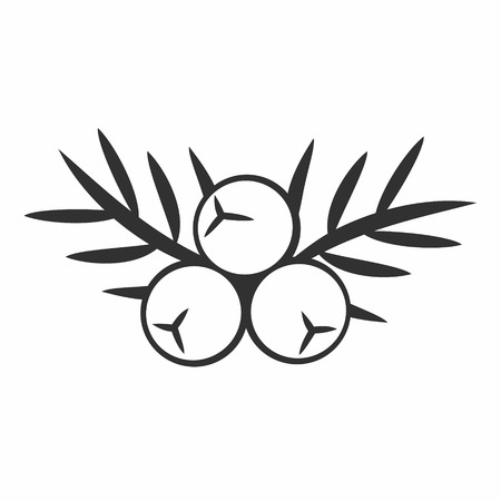 Juniper berry icon