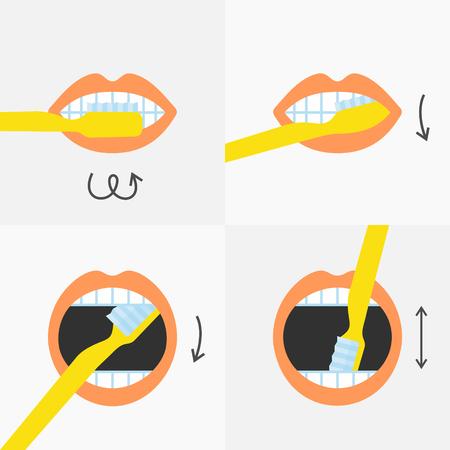 Cómo cepillarse los dientes instrucciones 4 pasos, ilustración vectorial