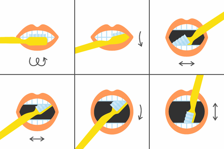 How to brush your teeth instructions 6 steps, vector illustration 向量圖像