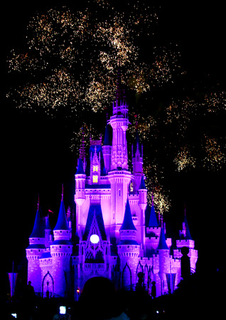 Castle at Magic Kingdom  Orlando FL 免版税图像 - 39701778