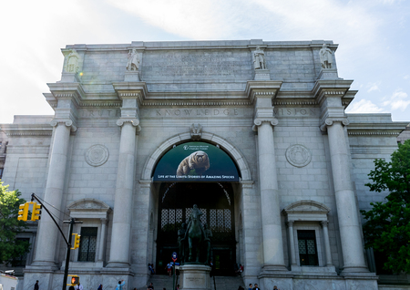 sciences: New York City Museum of Natural Sciences