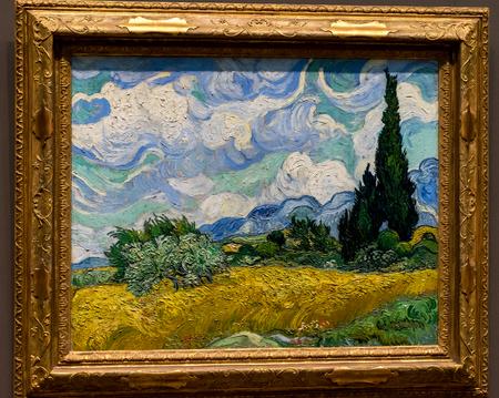 New York City The Met - Van Gogh - Irises & Roses