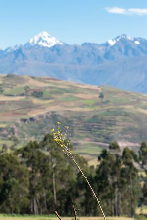 The inescapable snow peaked Andes in the Sacred Valley of Peru.