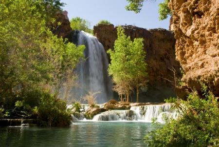 cottonwood  tree: Havasu Falls waterfall located in the Grand Canyon in Arizona