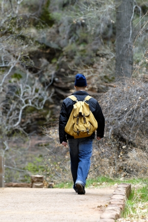 Hiker with backpack walking in the forest away from the camera