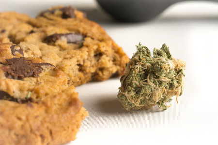 narcotic: Edibles Marijuana Cookie Chocolate chip weed cookie Alternative medicine baking with herb