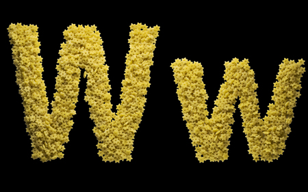 Alphabet made of pasta in the shape of a Star of David. The letter W. Isolated on a black background.