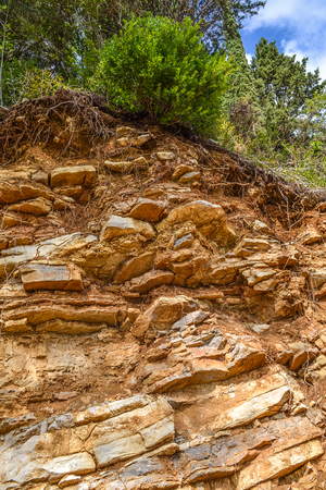 soil erosion: Texture of the rock. Large rocks exfoliate from the rock. The roots of the tree hang down