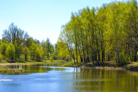 Lake early in the spring. Trees, sunny day, blue sky.