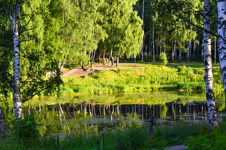 Beautiful view of the lake. Early morning. Summer. Russia. Moscow region.