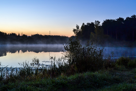 Early morning. Silhouettes of reeds near a forest lake. Fog over the water. Banque d'images