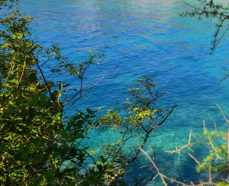 Nice view of the sea. Top view through the trees. Adriatic Sea. Montenegro.