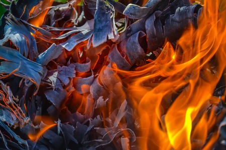Abstract background of fire, coals, flames and twisting elements of ash