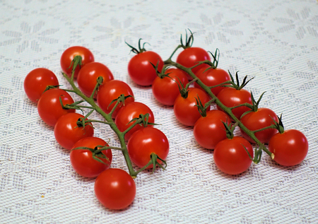 Cherry tomatoes on a branch in two rows on a table with a blanket tablecloth 写真素材