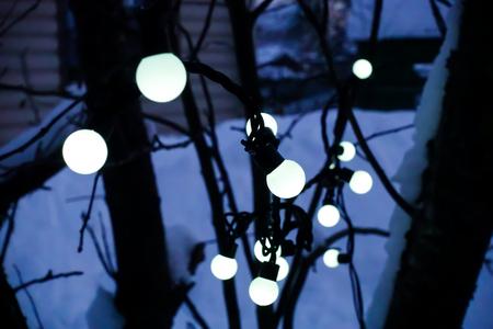 garland of white light bulbs on a tree. 版權商用圖片