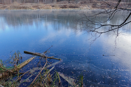 Blue ice on the surface of a forest lake. The snow has not yet fallen. Early winter