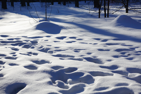 Snow drifts and footprints in the snow. Sunny day. Winter background. Stok Fotoğraf