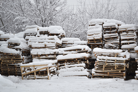 Wood and palets under the snow. Winterfield