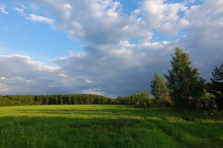 Beautiful landscape. Green field and cloudy sky. Central Russia. Moscow region
