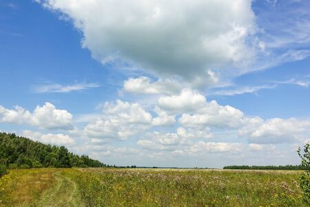Beautiful countryside landscape. Green field and blue sky with clouds. Stock Photo
